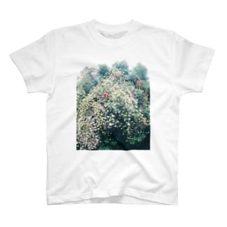 天国 T-shirts