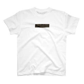 lion box T-shirts