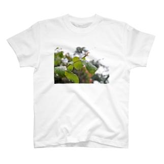 雨の日 T-shirts