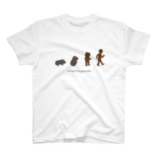 モルモット進化論(文字有り) T-shirts