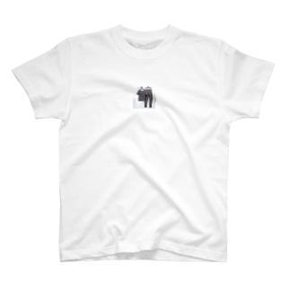 グッチ上下セット韓国 半袖 パンツ T-shirts
