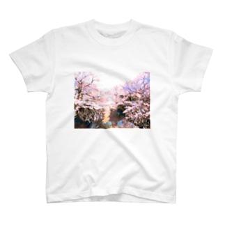 さくらばえ いち T-shirts
