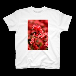 かぴばらのFLOWERS-あか- T-shirts