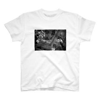 Opera T-shirts