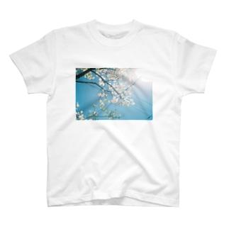 フィルム 青空と白い花 T-shirts