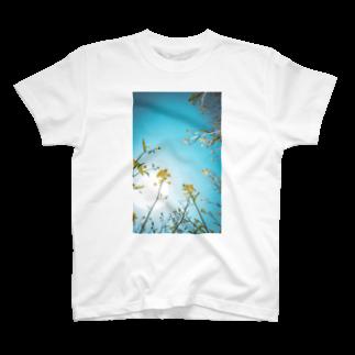 ma.cocoro shopのはな。 T-shirts