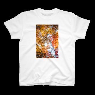 ma.cocoro shopのもみじ。 T-shirts