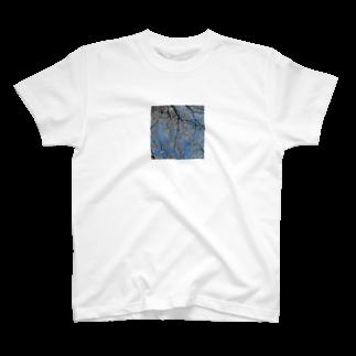 なづの桜 T-shirts
