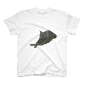 ℳ𝒪𝒩𝒪🥀のかむにゃん T-shirts