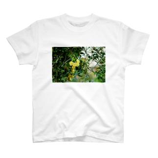 FLOWER-きいろ- T-shirts