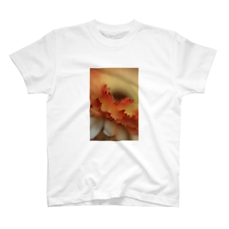 クローズアップ・フラワー T-shirts