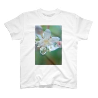 花雫A T-shirts