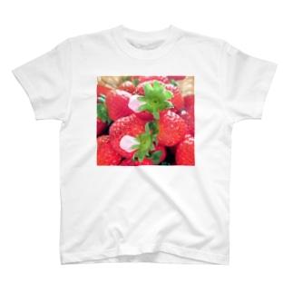 花びらいちごC T-shirts
