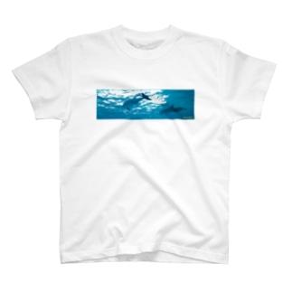 🐬ඩොල්ෆින් සමඟ T-shirts