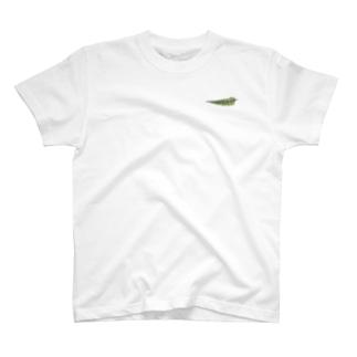 シダ植物 T-shirts