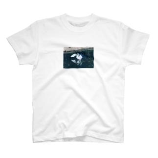 白鳥Tシャツ T-shirts