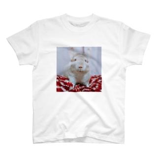 我が愛しのチンチラ さつま T-Shirt