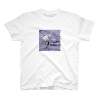 Tシャツ 白鳥 5 T-shirts