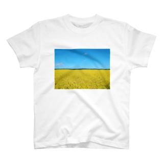 田んぼと青空 T-shirts