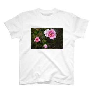 Fleur du jardin 庭の花 T-shirts