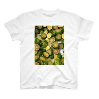 シークワサー酵素フィー。 T-shirts