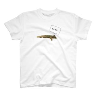 起きる気がないリス T-shirts