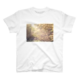 カラマツ T-shirts