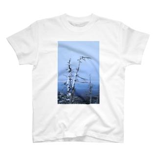 雪山 T-shirts