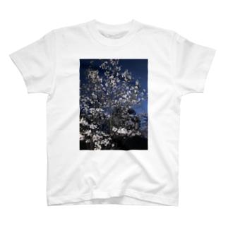来年こそは花見したいぞ T-shirts