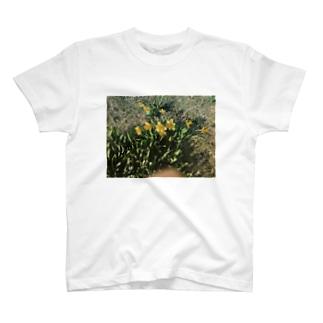 春ティー T-shirts