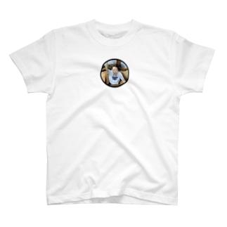 ジェットコースターでの世界一の事故画 T-shirts