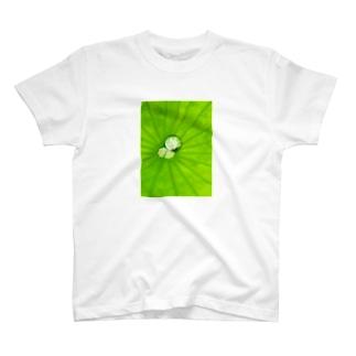 オノコロ T-shirts