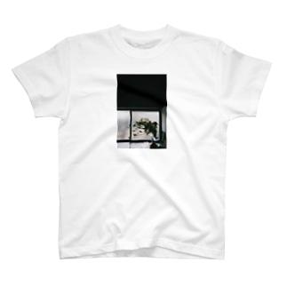 harucamera ミモザ T-shirts