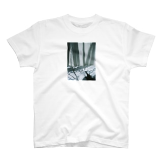 harucamera dawn T-shirts