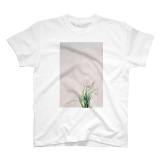 harucamera チューリップ T-shirts
