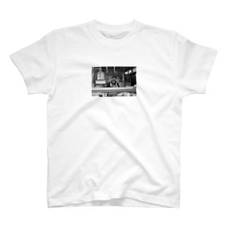 Rome T-shirts