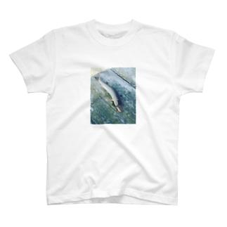 ウグイ T-shirts