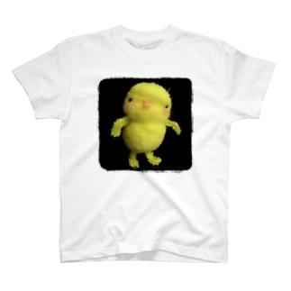 ひよこのひーちゃん証明写真 T-shirts