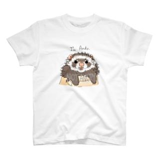 チャリティグッズ*アンディーちゃん T-shirts