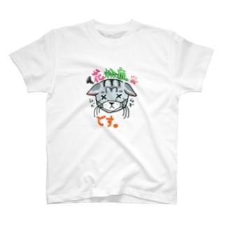 花粉症です。アメショー猫ちゃんイラストメッセージ T-shirts