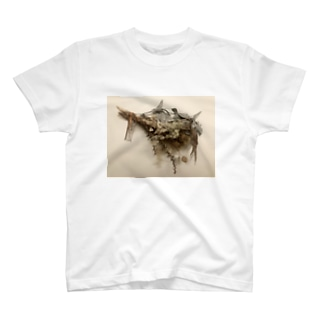 AS(lowly)AP. flowers  T-shirts