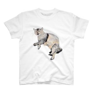 猫ののら T-shirts