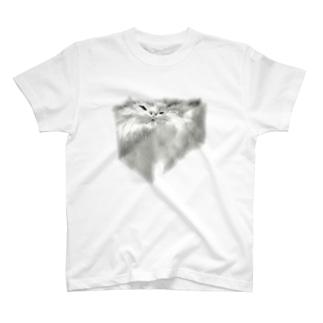 Cat=Liquid T-shirts