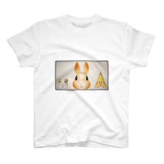 うさぎとモルモットとオカメインコを並ばせてみました。 T-shirts