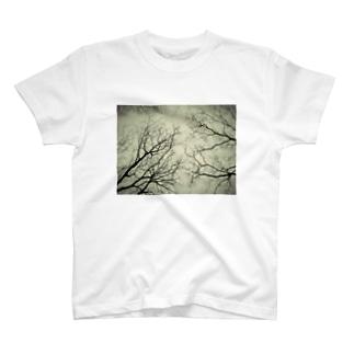 雨の日の中で T-shirts