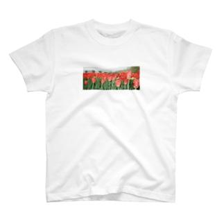 赤いチューリップTシャツ T-shirts