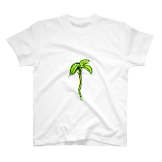 春が来た! T-shirts
