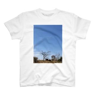 ゾウと空 T-shirts