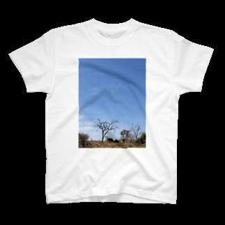Hagのゾウと空 T-shirts