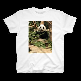 HKGのあーー!パンダ T-shirts